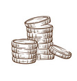 coin stacks isolated sketch money and finance vector image vector image