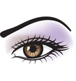 Female brown eye vector | Price: 1 Credit (USD $1)