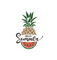 hello summer lettering with pineapple and watermel vector image vector image