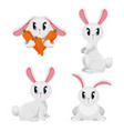 long haired rabbits set in different positions vector image vector image