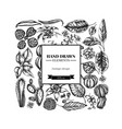 square floral design with black and white ficus vector image vector image