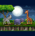 wild animal living at forest vector image vector image