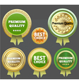 Premium quality and best choice label vector image