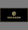 dm hexagon logo vector image
