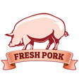 fresh pork pig with ribbon vector image
