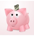 Piggy bank with dollar concept vector image
