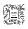 square floral design with black and white monstera vector image vector image