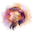 watercolor lion head vector image vector image