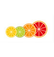 collection of citrus slices grapefruit lime vector image
