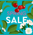 advertisement about spring sale on background vector image vector image