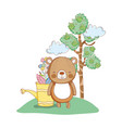 cute little bear in the garden vector image