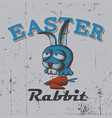 easter rabbit poster vector image
