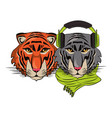 hipster tigers cool sketch vector image