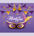 mask with feathers and party banner decoration vector image