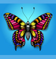 tropical colorful butterfly on blue background vector image