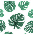tropical exotic monstera leaves seamless pattern vector image vector image