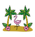 tropical summer pink flamingo cartoon vector image vector image