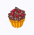 vanilla cupcake with chocolate cream and red berry vector image vector image