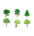 collection coniferous and deciduous trees vector image vector image