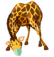 giraffe cartoon character wearing mask vector image vector image