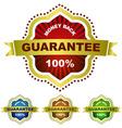guarantee vector image vector image