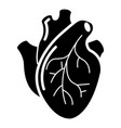 human heart organ icon simple style vector image