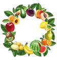 eco food menu background hand drawn fruits vector image