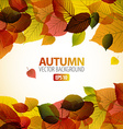 Autumn abstract background with colorful leafs vector image