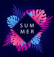beautiful summer background vector image vector image