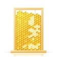 bee honeycomb in frame vector image