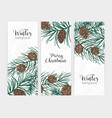 collection of elegant vertical festive winter vector image vector image