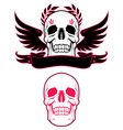 skull wings and ribbon vector image vector image