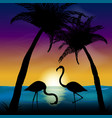 Two silhouettes of flamingos in the background of