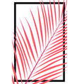 abstract summer card pink tropical leave on white vector image vector image