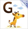animal alphabet for kids g for giraffe vector image