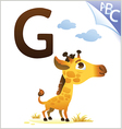 Animal alphabet for the kids G for the Giraffe vector image vector image