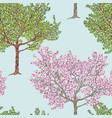 fruit tree in different seasons vector image vector image