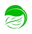 Green leaf icon simple style vector image vector image