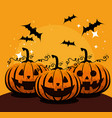halloween card with pumpkins and bats flying vector image vector image