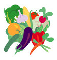 with hand drawn vegetables farm market products vector image