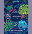 summer party text with frame palm vector image