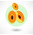 Cartoon Papaya vector image vector image