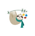 cute sloth hangs on a branch christmas or new year vector image
