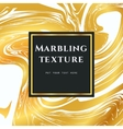 Marble PatteMarbling Texture card Arn-04 vector image