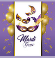masks with feathers and balloons to merdi gras vector image
