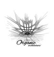 organic architecture the concept of unity with vector image vector image