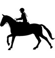 young woman riding horse silhouette equestrian vector image vector image