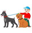 a boy standing at the back of two big dog vector image vector image