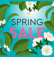 advertisement about the spring sale on background vector image vector image