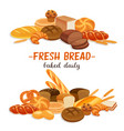 banner with bread products vector image